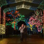 Win a Holiday Engagement Session!