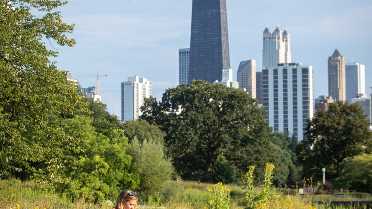 Cassidy & Kyle's Chicago Proposal in Lincoln Park
